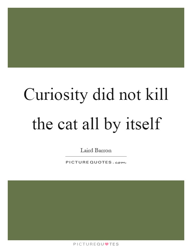 Curiosity did not kill the cat all by itself Picture Quote #1
