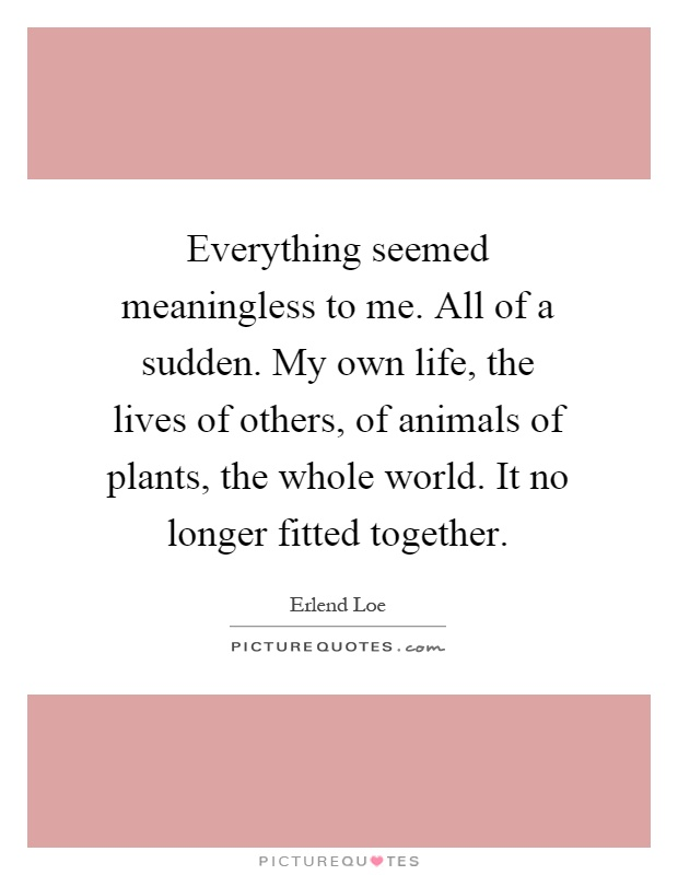Everything seemed meaningless to me. All of a sudden. My own life, the lives of others, of animals of plants, the whole world. It no longer fitted together Picture Quote #1
