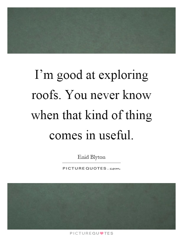 I'm good at exploring roofs. You never know when that kind of thing comes in useful Picture Quote #1