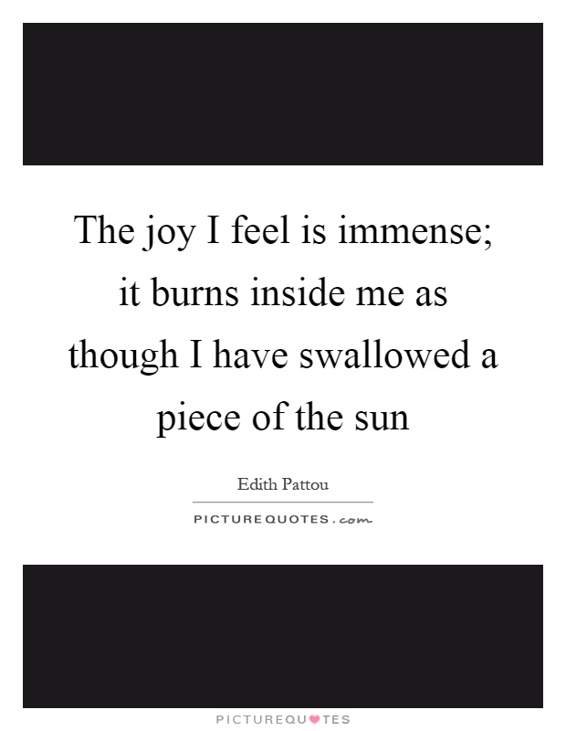 The joy I feel is immense; it burns inside me as though I have swallowed a piece of the sun Picture Quote #1