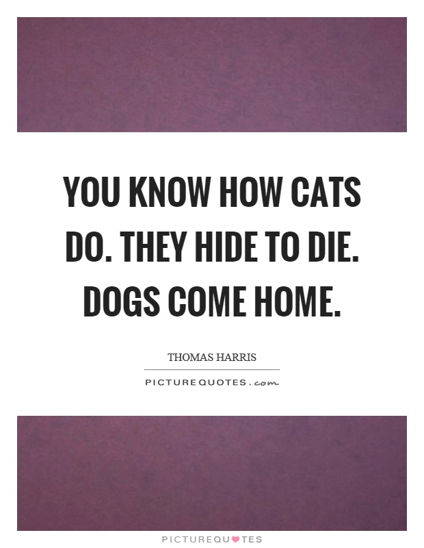 You know how cats do. They hide to die. Dogs come home Picture Quote #1