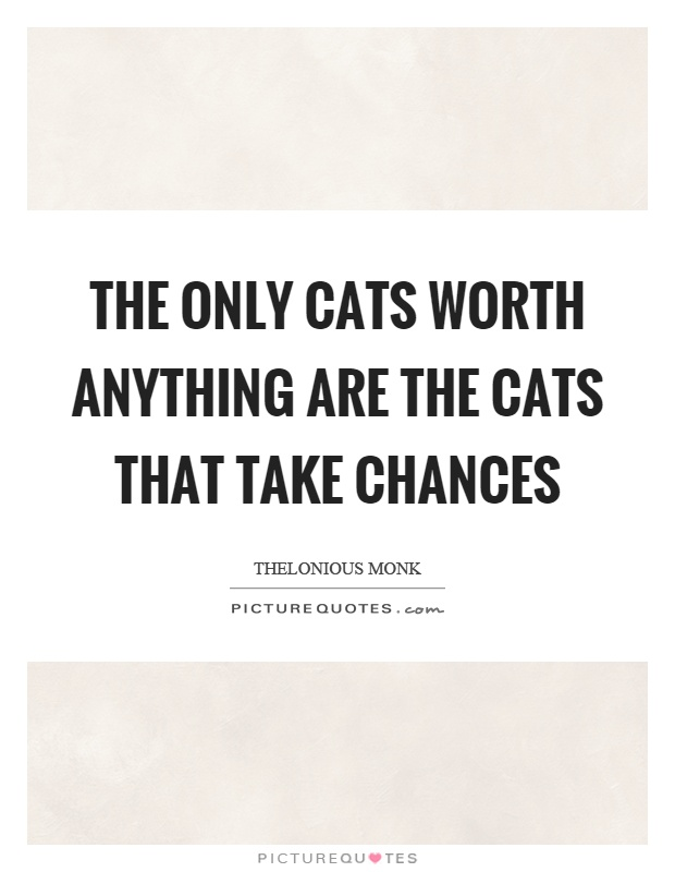 The only cats worth anything are the cats that take chances Picture Quote #1