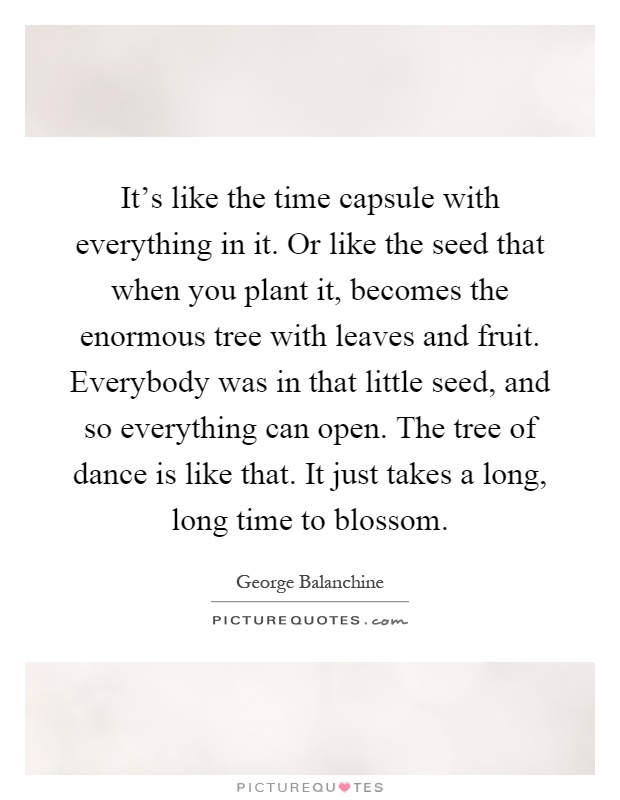 It's like the time capsule with everything in it. Or like the seed that when you plant it, becomes the enormous tree with leaves and fruit. Everybody was in that little seed, and so everything can open. The tree of dance is like that. It just takes a long, long time to blossom Picture Quote #1