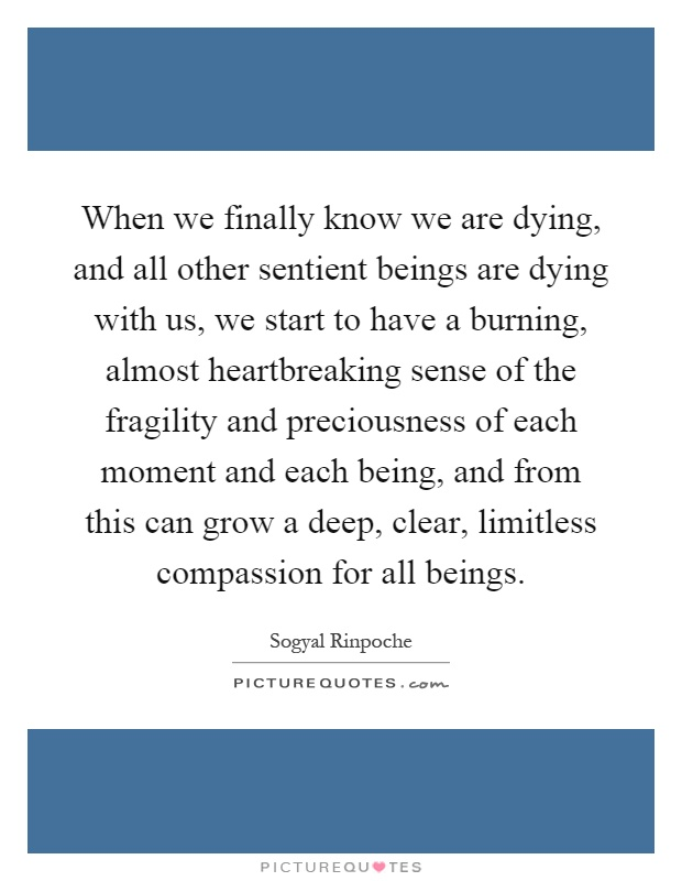When we finally know we are dying, and all other sentient beings are dying with us, we start to have a burning, almost heartbreaking sense of the fragility and preciousness of each moment and each being, and from this can grow a deep, clear, limitless compassion for all beings Picture Quote #1