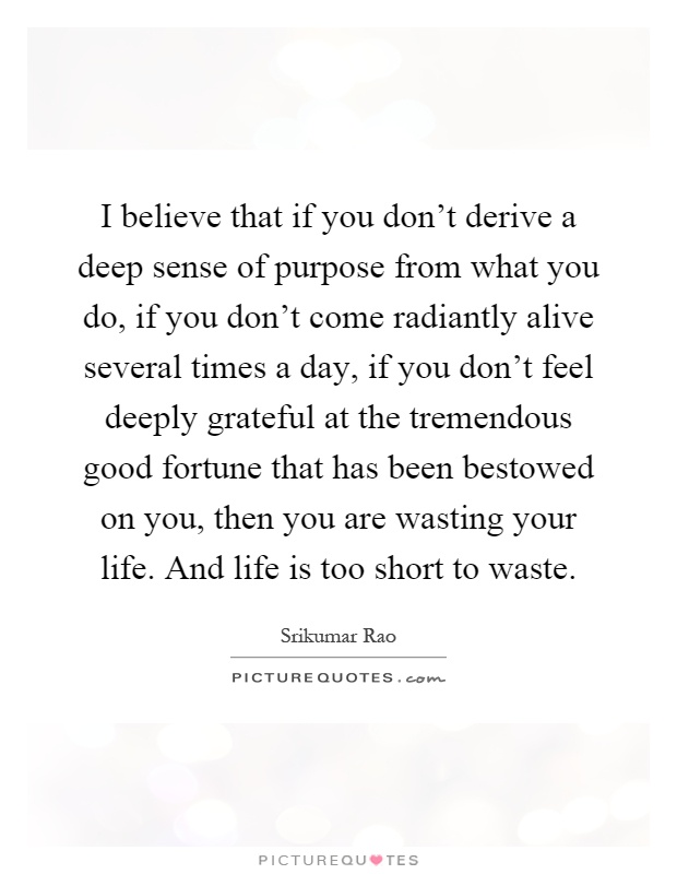 I believe that if you don't derive a deep sense of purpose from what you do, if you don't come radiantly alive several times a day, if you don't feel deeply grateful at the tremendous good fortune that has been bestowed on you, then you are wasting your life. And life is too short to waste Picture Quote #1