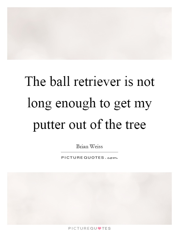 The ball retriever is not long enough to get my putter out of the tree Picture Quote #1