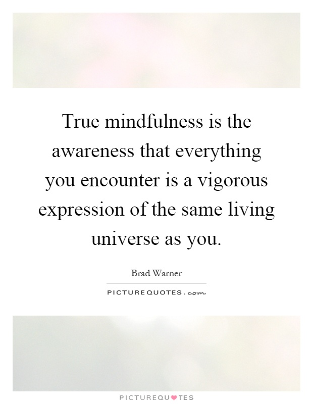 True mindfulness is the awareness that everything you encounter is a vigorous expression of the same living universe as you Picture Quote #1