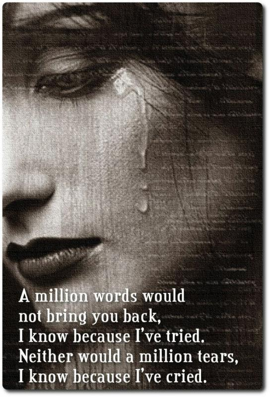 A million words would not bring you back, I know because I've tried. Neither would a million tears, I know because I've cried Picture Quote #1
