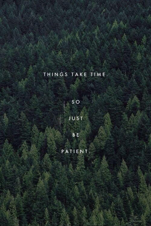 Things take time, so just be patient Picture Quote #1