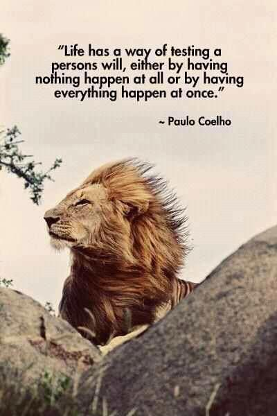 Life has a way of testing a person's will, either by having nothing happen at all or by having everything happen at once Picture Quote #1