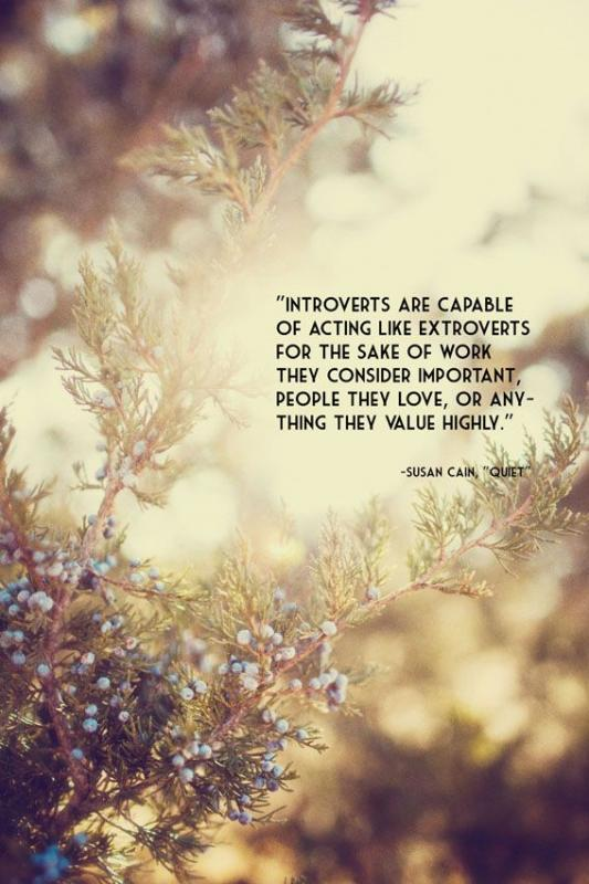 Introverts are capable of acting like extroverts for the sake of work they consider important, people they love, or anything they value Picture Quote #1