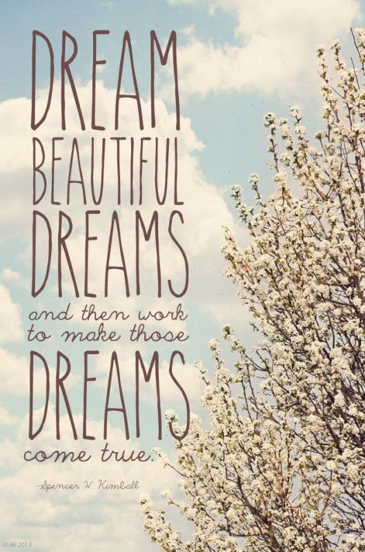 Dream beautiful dreams and then work to make those dreams come true Picture Quote #1