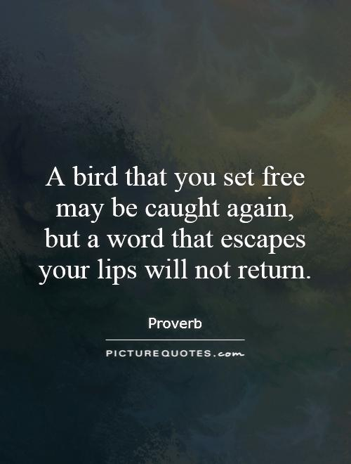 A bird that you set free may be caught again, but a word that escapes your lips will not return Picture Quote #1