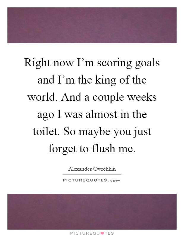 Right now I'm scoring goals and I'm the king of the world. And a couple weeks ago I was almost in the toilet. So maybe you just forget to flush me Picture Quote #1