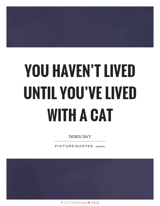 You haven't lived until you've lived with a cat Picture Quote #1