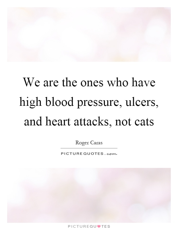 We are the ones who have high blood pressure, ulcers, and heart attacks, not cats Picture Quote #1