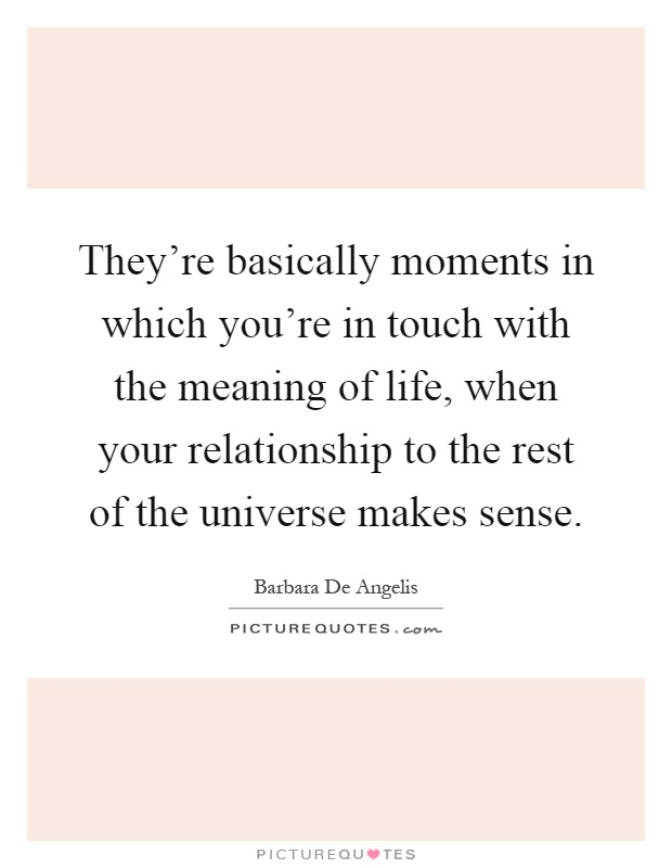 They're basically moments in which you're in touch with the meaning of life, when your relationship to the rest of the universe makes sense Picture Quote #1