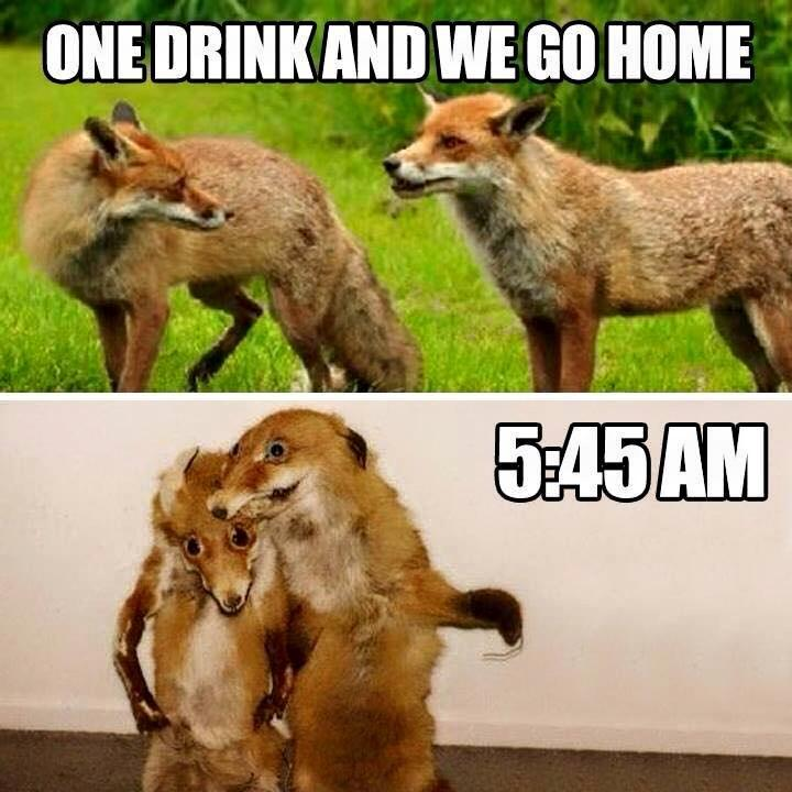 One drink and we go home. 5:45 AM Picture Quote #1