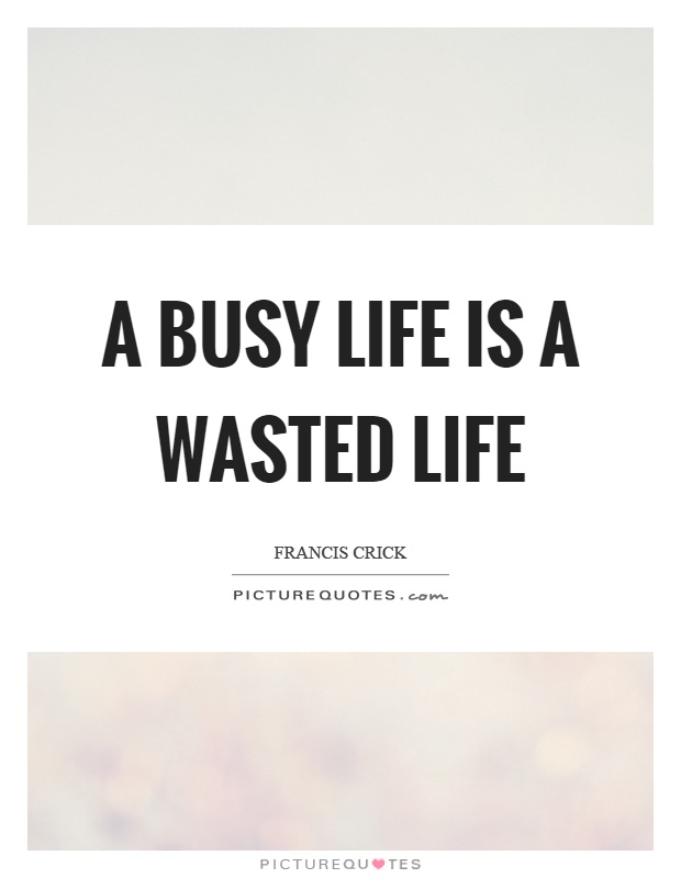A busy life is a wasted life Picture Quote #1