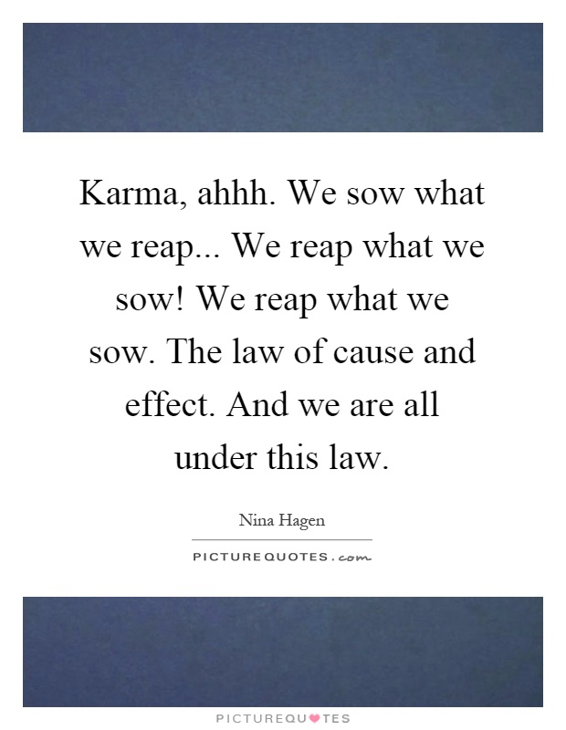 Karma, ahhh. We sow what we reap... We reap what we sow! We reap what we sow. The law of cause and effect. And we are all under this law Picture Quote #1