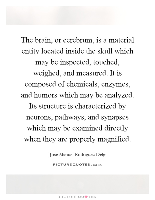 The brain, or cerebrum, is a material entity located inside the skull which may be inspected, touched, weighed, and measured. It is composed of chemicals, enzymes, and humors which may be analyzed. Its structure is characterized by neurons, pathways, and synapses which may be examined directly when they are properly magnified Picture Quote #1