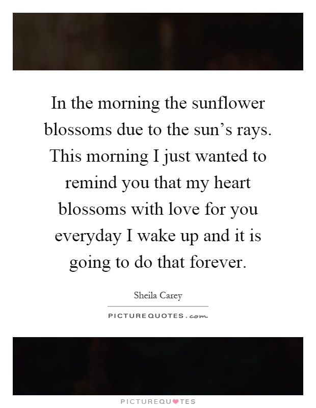 In the morning the sunflower blossoms due to the sun's rays. This morning I just wanted to remind you that my heart blossoms with love for you everyday I wake up and it is going to do that forever Picture Quote #1