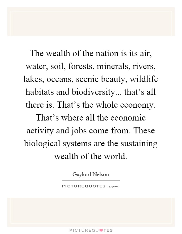 The wealth of the nation is its air, water, soil, forests, minerals, rivers, lakes, oceans, scenic beauty, wildlife habitats and biodiversity... that's all there is. That's the whole economy. That's where all the economic activity and jobs come from. These biological systems are the sustaining wealth of the world Picture Quote #1