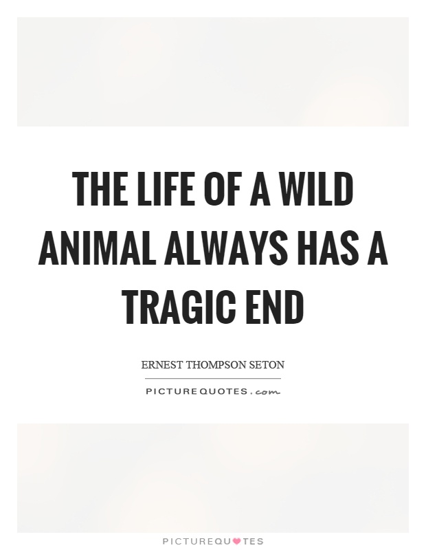 The life of a wild animal always has a tragic end Picture Quote #1