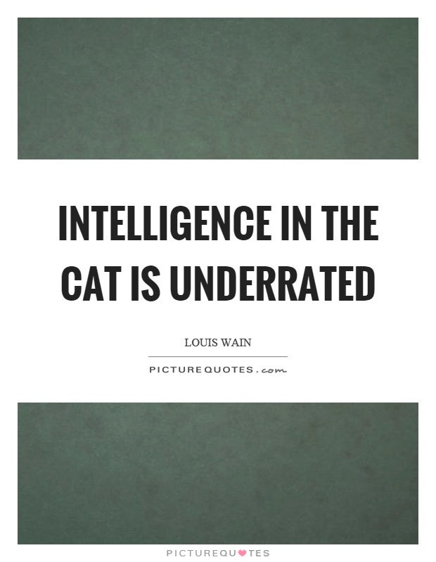 Intelligence in the cat is underrated Picture Quote #1