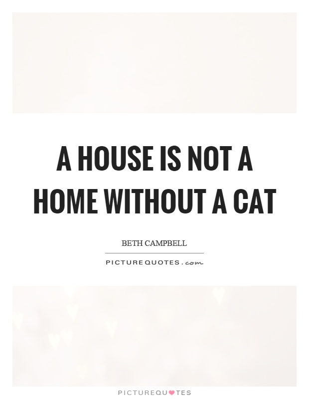 A house is not a home without a cat Picture Quote #1