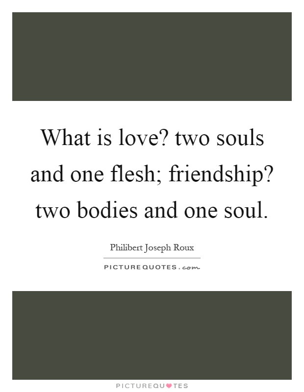 What is love? two souls and one flesh; friendship? two bodies and one soul Picture Quote #1