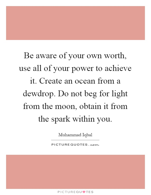 Be aware of your own worth, use all of your power to achieve it. Create an ocean from a dewdrop. Do not beg for light from the moon, obtain it from the spark within you Picture Quote #1