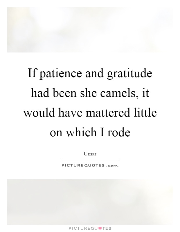 If patience and gratitude had been she camels, it would have mattered little on which I rode Picture Quote #1