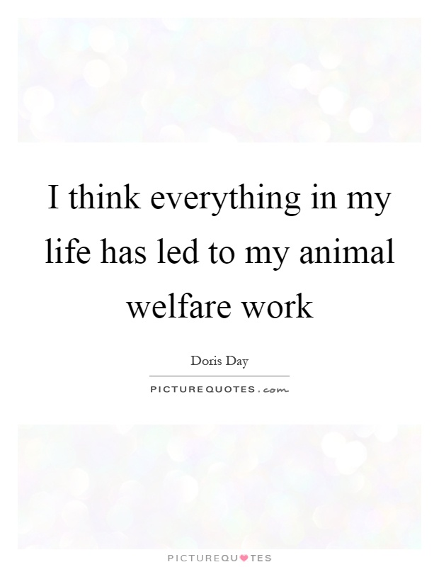 I think everything in my life has led to my animal welfare work Picture Quote #1