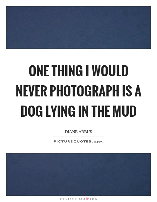 One thing I would never photograph is a dog lying in the mud Picture Quote #1