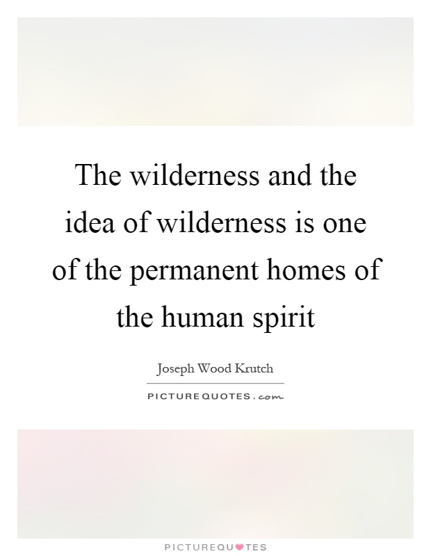 The wilderness and the idea of wilderness is one of the permanent homes of the human spirit Picture Quote #1