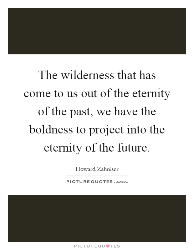 The wilderness that has come to us out of the eternity of the past, we have the boldness to project into the eternity of the future Picture Quote #1