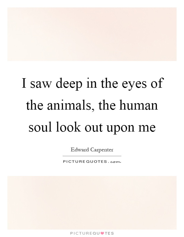 I saw deep in the eyes of the animals, the human soul look out upon me Picture Quote #1