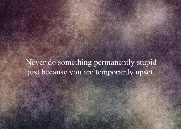 Never do something permanently stupid just because you are temporarily upset Picture Quote #1