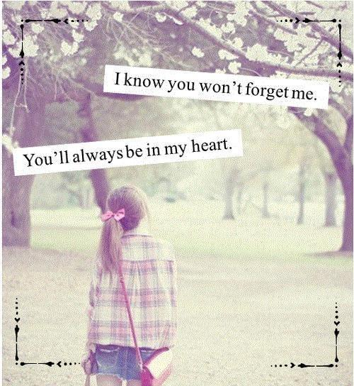 I know you won't forget me. You'll always be in my heart Picture Quote #1