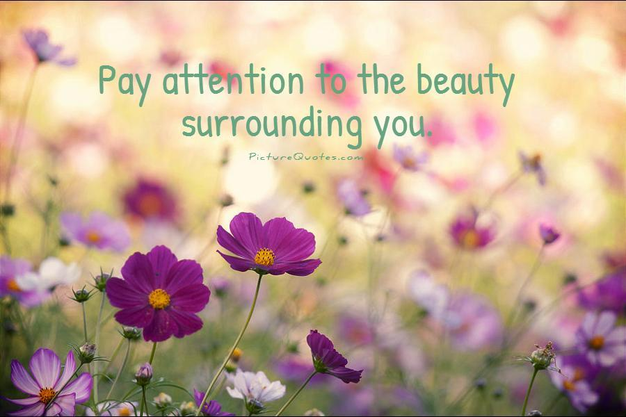 Pay attention to the beauty surrounding you Picture Quote #1