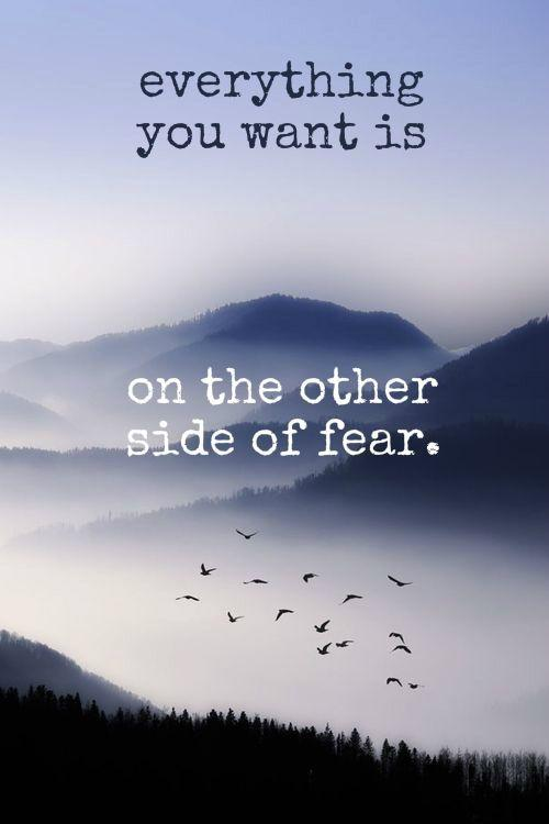 Everything you want is on the other side of fear Picture Quote #2