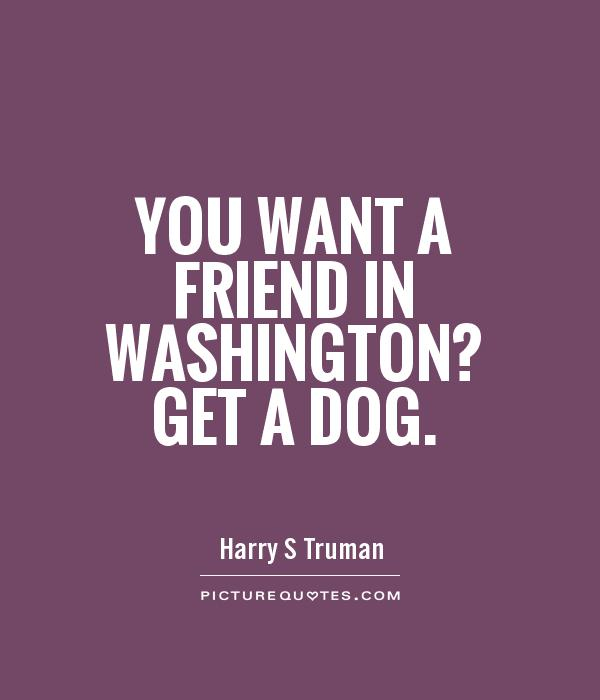You want a friend in Washington? Get a dog Picture Quote #1