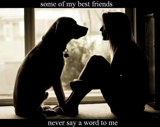 Some of my best friends never say a word to me Picture Quote #1