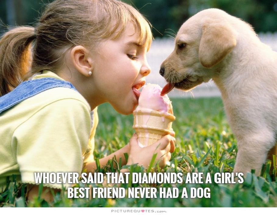 Whoever said that diamonds are a girl's best friend never had a dog. Picture Quote #2
