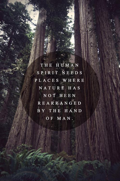 The human spirit needs places where nature has not been rearranged by the hand of man Picture Quote #2