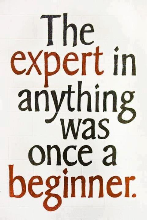 The expert in anything was once a beginner. Picture Quote #1