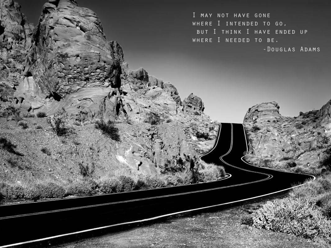 I may not have gone where I intended to go, but I think I have ended up where I needed to be Picture Quote #2