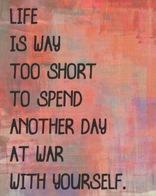 Life is way too short to spend another day at war with yourself Picture Quote #1