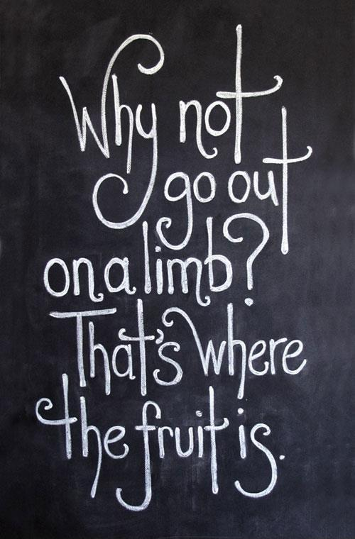 Why not go out on a limb. That's where the fruit is Picture Quote #1
